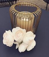 BC Wedding Designs